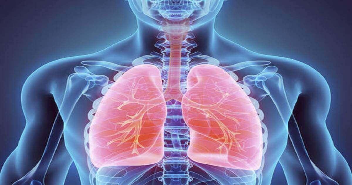 Appunti su Apparato respiratorio e alcune patologie